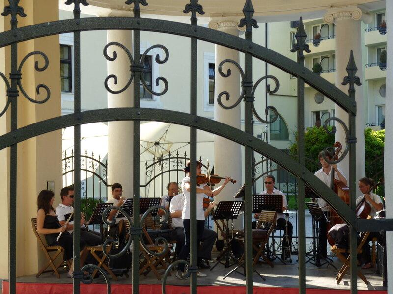 Оркестр созывает всех на водопой:)