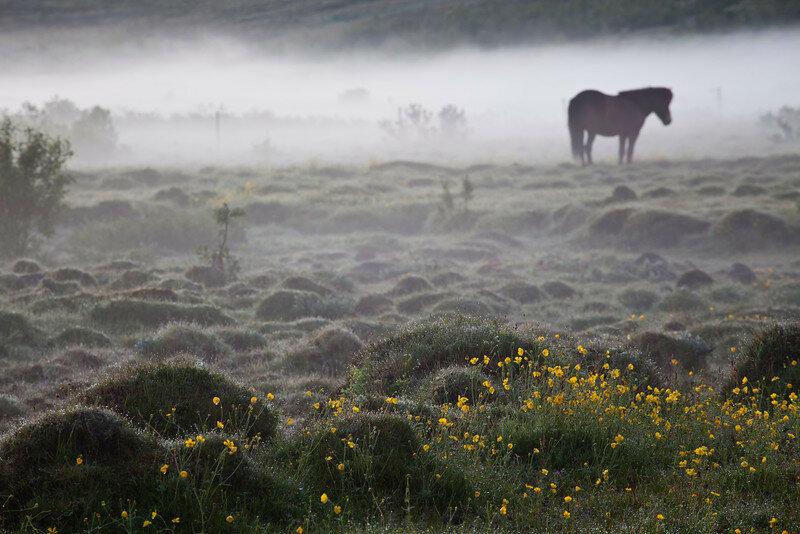 Невероятно красивые фотографии Исландии 0 1b7c2f ae9eb0d8 XL