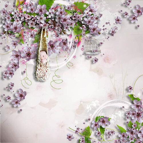 «Marta_FloweringCherries» 0_9028e_80afb385_L