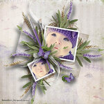 «Lavender Time» 0_90bc3_b17dd998_S