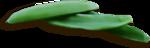 «kimla_Spring_Cooking»  0_91044_716b8c1f_S