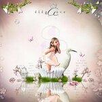 «Dreamin Pink» 0_99ae3_ac4437f3_S