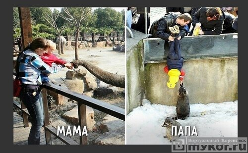Папа, мама и ребёнок. Есть разница?