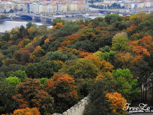 Вид с Петршина, парк под смотровой башней