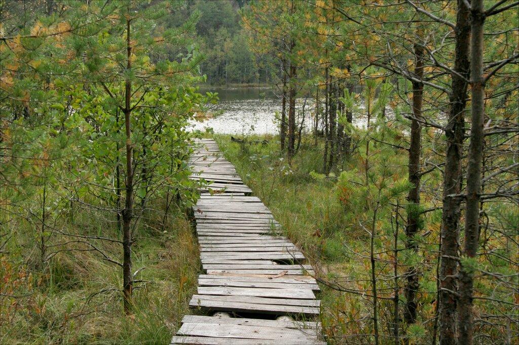 Экотропа, Глебовское озеро