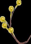 Lilas_Old-Garden_elmt (23).png