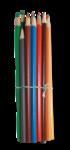 natali_school_pencils1-sh.png