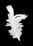 Palvinka_FlowerAdventure_feather2.png