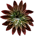 feli_btd_fabric flower1.png