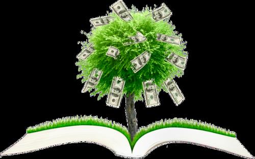 денежные книги