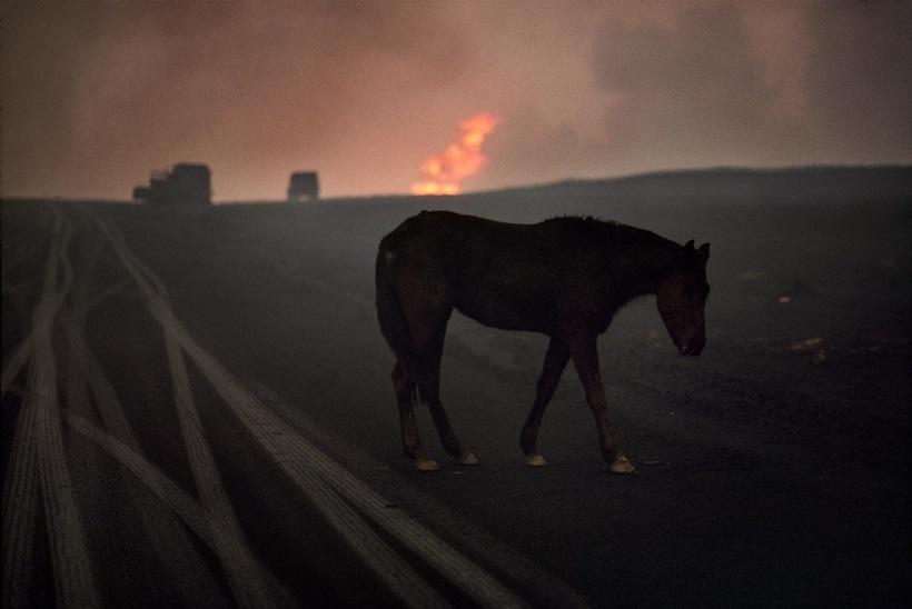 Стив Маккарри: гениальные снимки гениального фотографа 0 e3ad5 d75bb722 orig