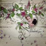 shadelia-1-02-0.jpg