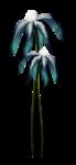 «Charming_Dwarf_Forest» 0_9101d_6ead6a0f_S