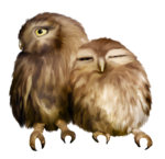 «Charming_Dwarf_Forest» 0_91022_f0efbc87_S