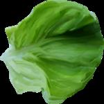 «kimla_Spring_Cooking»  0_9107f_e5ec976b_S