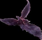 Скрап набор - Рататуй (Ratatouille) 0_9124a_c49a27d2_S