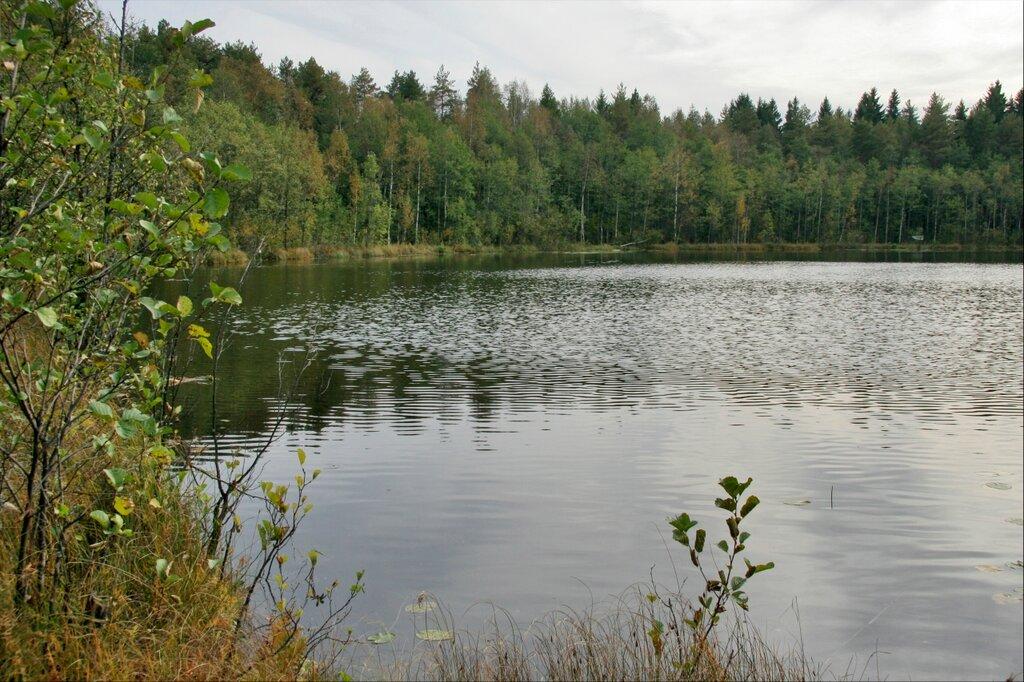 Глебовское озеро