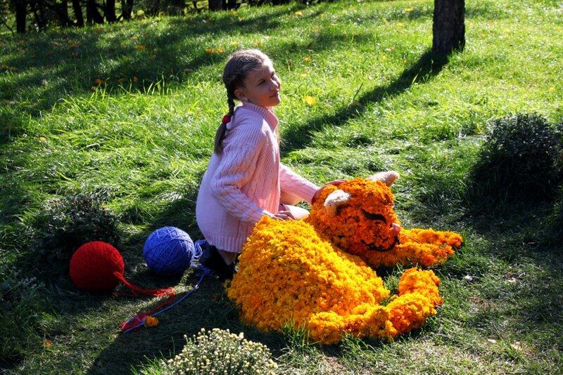 Кот из желтых хризантем