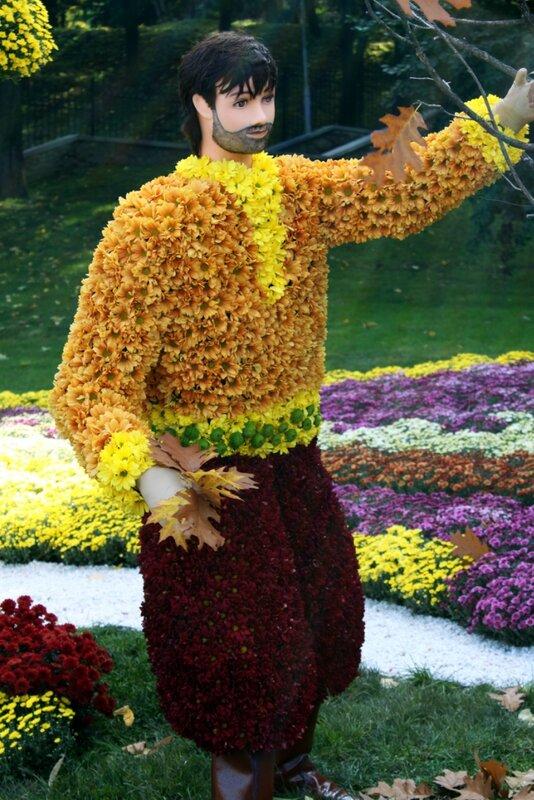 Выставка хризантем 2012 на Певческом поле