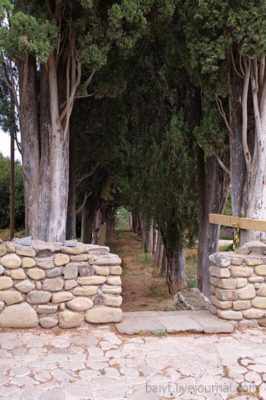 Кипарисовая аллея в Бодбе у ворот монастыря.