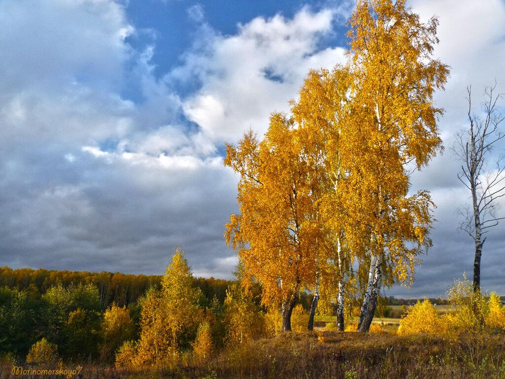 Картинки волшебная осень сказочный чертог