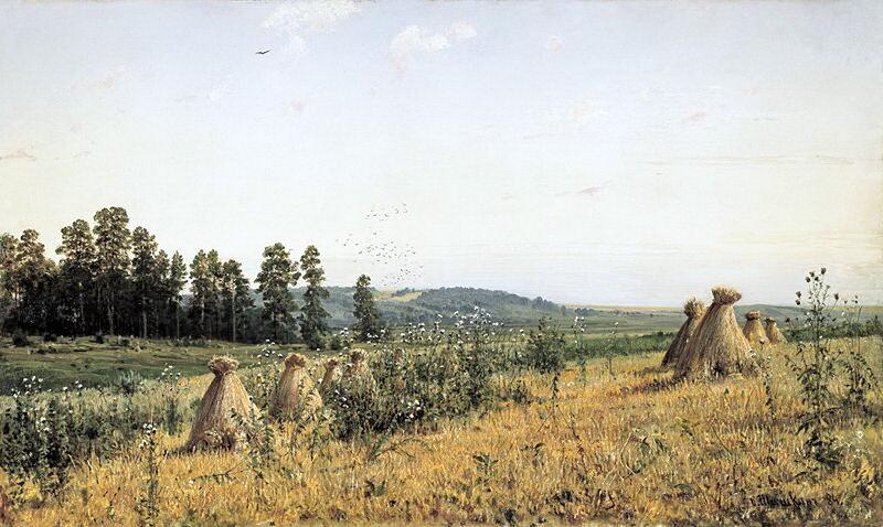 Полесье. 1884 г. И.И. Шишкин.jpg