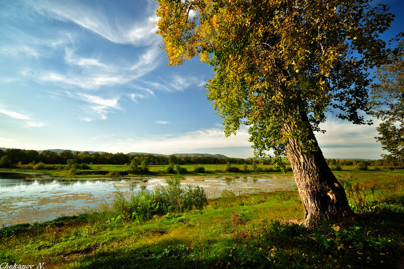 федоровские луга фото тольятти