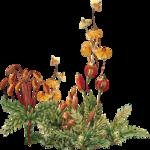 priss_strangebeauty_plants.png