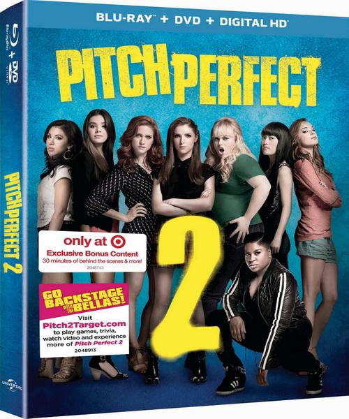 ��������� ����� 2 / Pitch Perfect 2 (2015/BDRip/HDRip)