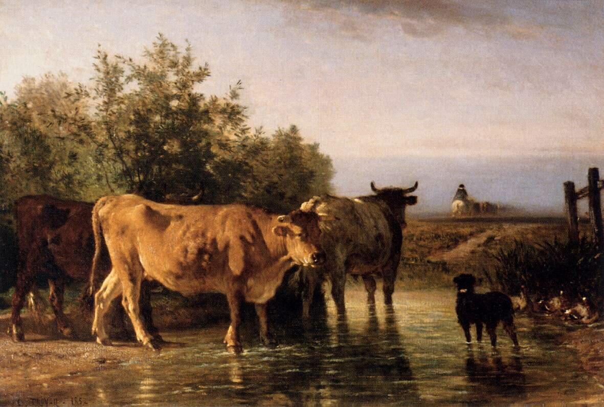 Брод, 1862, масло на холсте, Труайон, Констан(1810–1865)