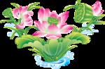 цветы (90).png