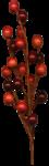 jbillingsley-autumnbreeze-fallberries.png