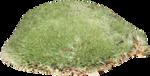 Forest_Scent_Zalinka_el (49).png