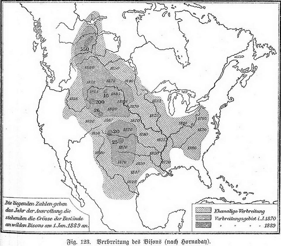 Уничтожение бизонов в США