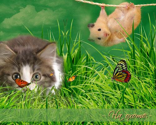http://img-fotki.yandex.ru/get/6613/20573769.13/0_84f00_b692d421_L.jpg