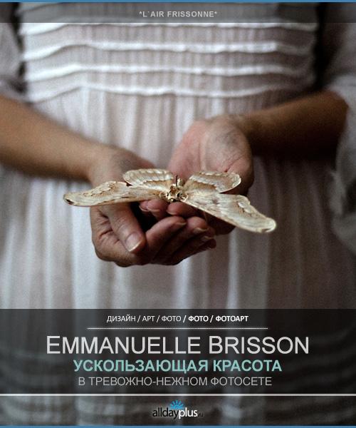 Бабочки Emmanuelle Brisson. Серия L'air frissonne des choses qui s'enfuient