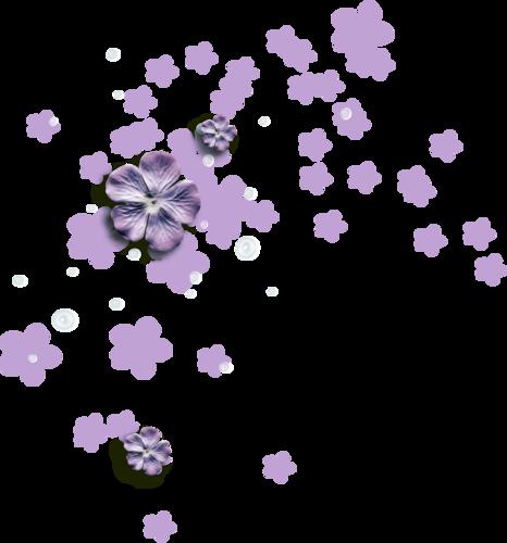 «Kimla_LavenderStory» 0_90272_c78c76af_L