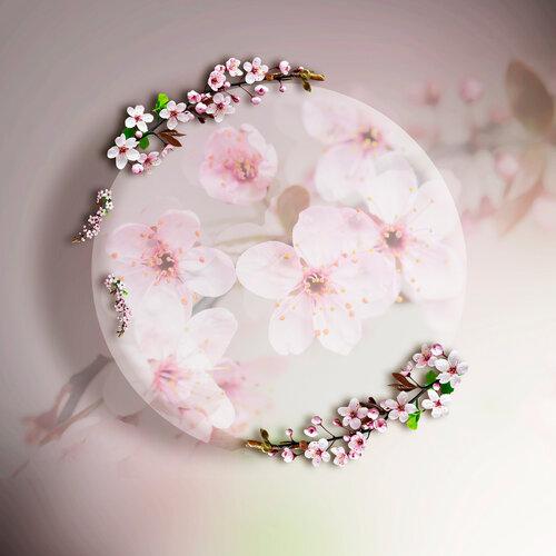 «Marta_FloweringCherries» 0_902c1_53ec412e_L
