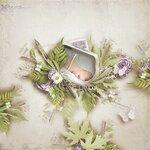 «Lavender Time» 0_90bc9_d518a34c_S