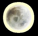 «Charming_Dwarf_Forest» 0_91006_eb6c56ef_S