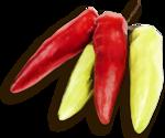 «kimla_Spring_Cooking»  0_9108b_fc31636d_S