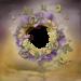 Mystique_Purple_Dream_QP2.png