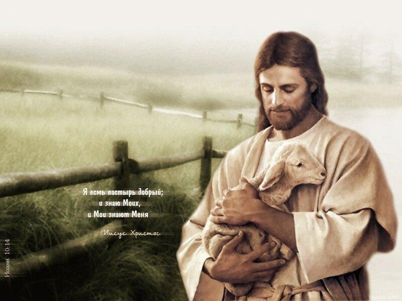 Размышления о пастырской заботе.