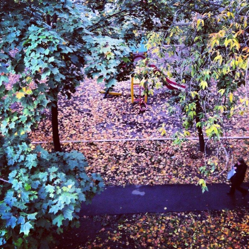 Осень. Вид сверху