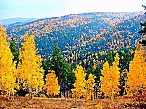 Осенний блюз поет моя душа...