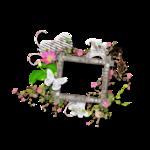 saskia_jedorssurdesroses_clusters.png