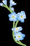 цветы-(255).png