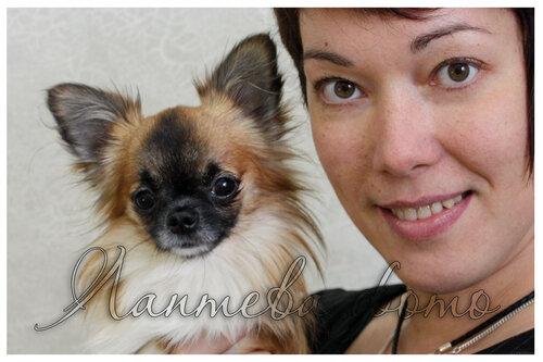 Лаптева-фото - Фотографии животных для питомников и заводчиков 0_b3554_ac097cfb_L