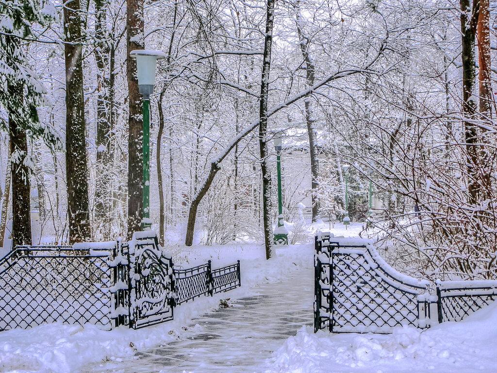 Дорожка в зимнию сказку.