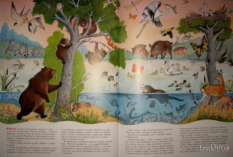 книга в лесу петра багина